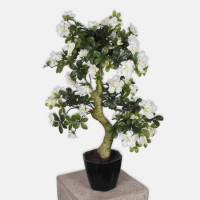 Mākslīgais augs AZALEA BONSAI