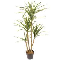 Mākslīgais augs DRACAENA 1.40m
