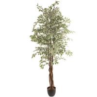 Mākslīgais augs FICUS 2.20m